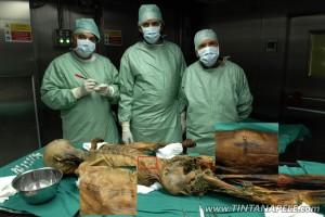 Otzi, a Múmia mais antiga do mundo