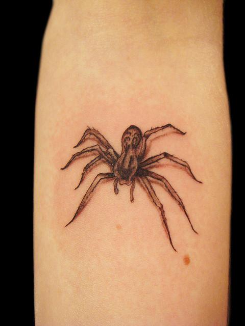 Tatuagens de aranhas (21)