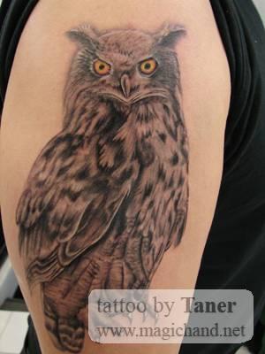 Tatuagens criativas de corujas (150)