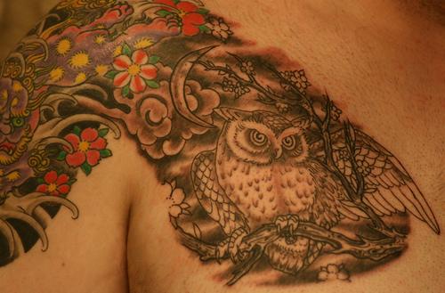 Tatuagens criativas de corujas (139)