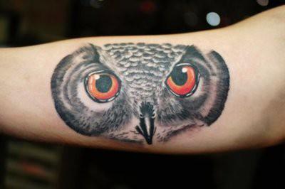 Tatuagens criativas de corujas (114)