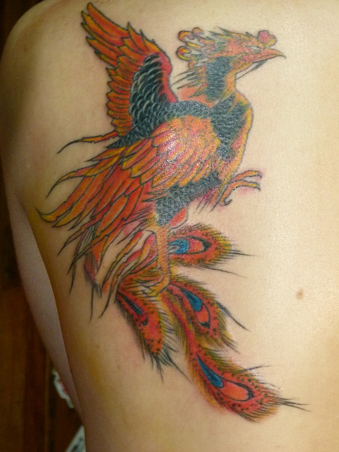 Tatuagens da Fênix (98)