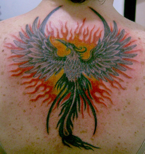 Tatuagens da Fênix (84)