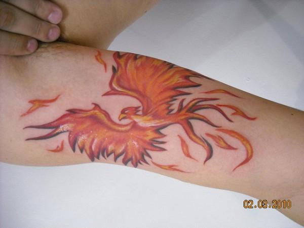 Tatuagens da Fênix (75)