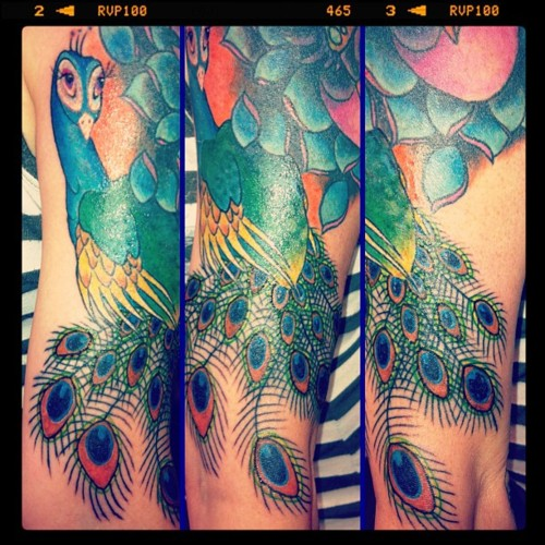 Peacock Tattoo (37)