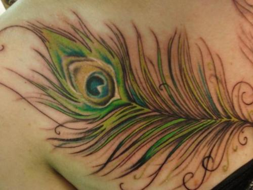 Peacock Tattoo (36)