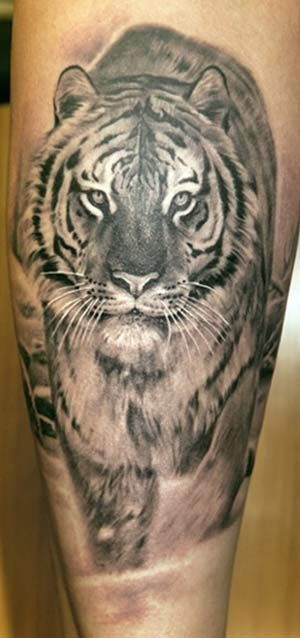 Tiger Tattoos (24)