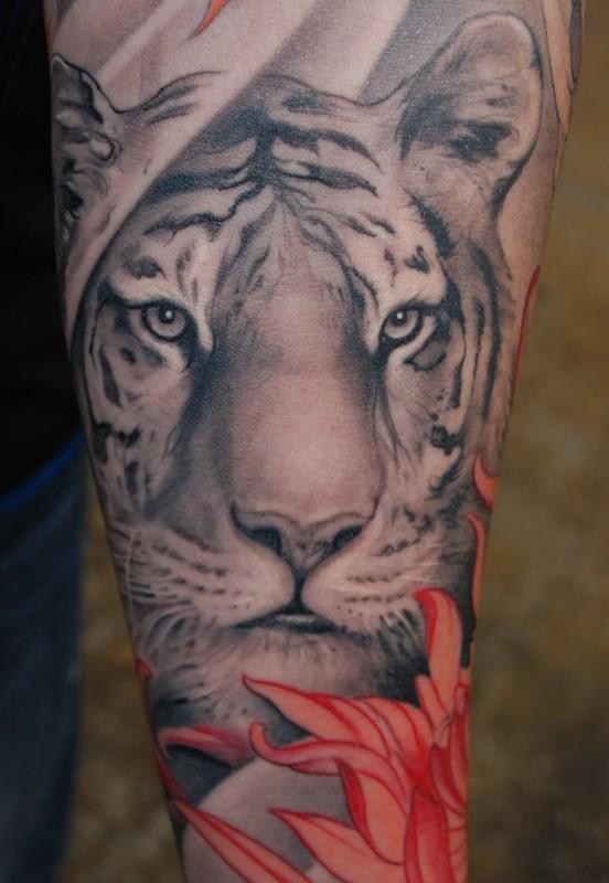 3d6a704d42b3b 60 Tatuagens de tigres - Semana Oriental