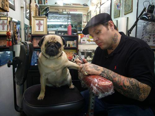 Tattooed People with Puppies (64)