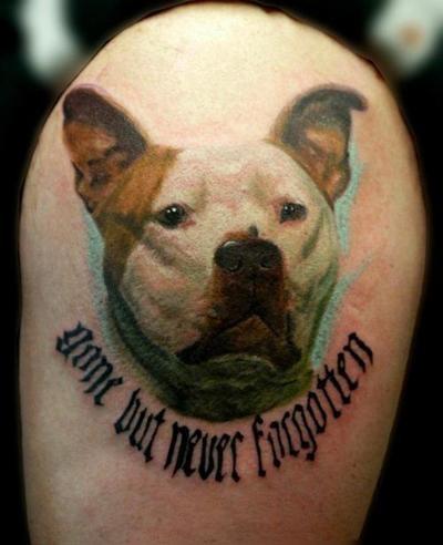 Tatuagens realistas (16)