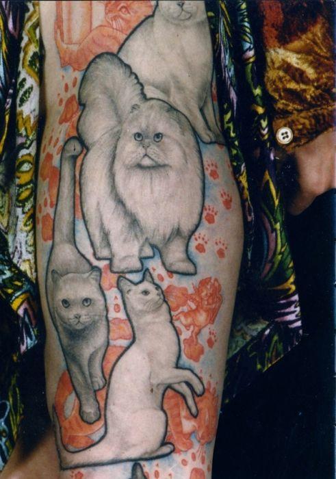 Lindas tatuagens de gatos 09