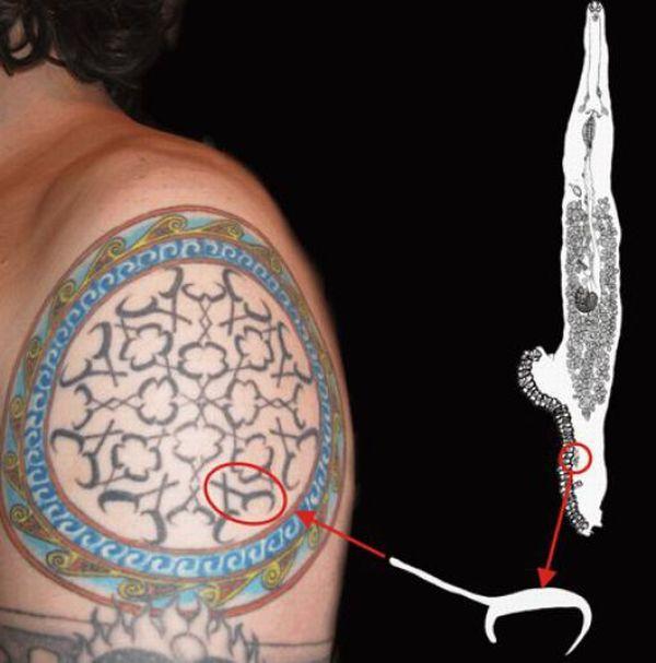 scientific_tattoos_20