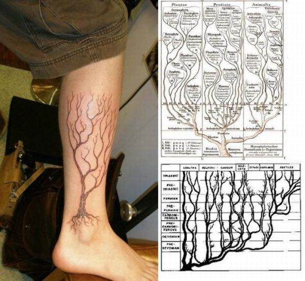 scientific_tattoos_36