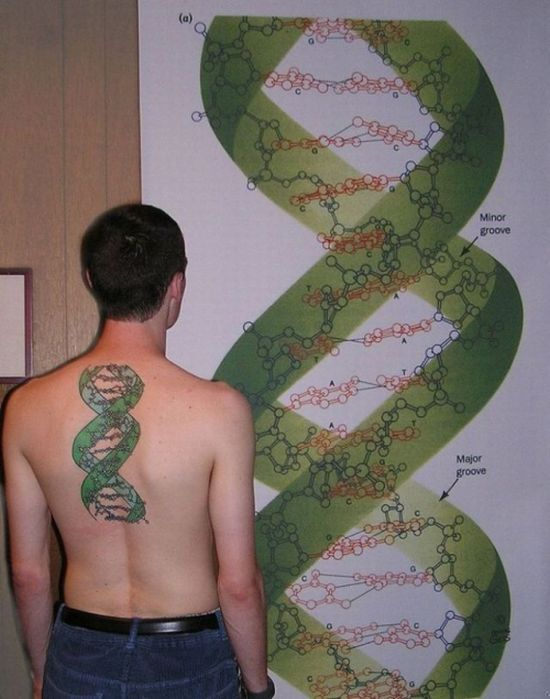 scientific_tattoos_65