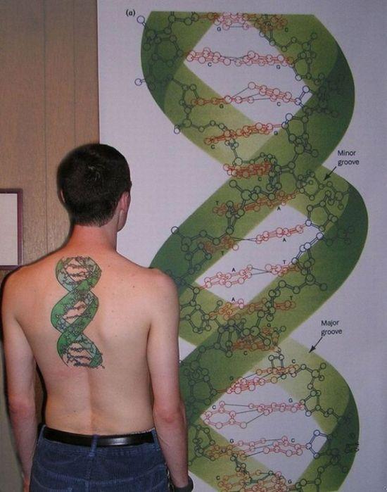 scientific_tattoos_65